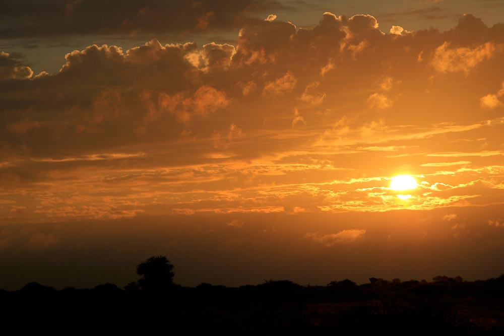 African Sunset 2 1000px
