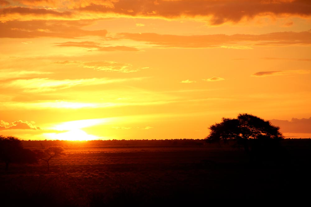 African Sunset 4 1000px